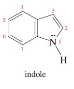benzene + pyrrole =