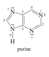 pyrimidine + imidazole =